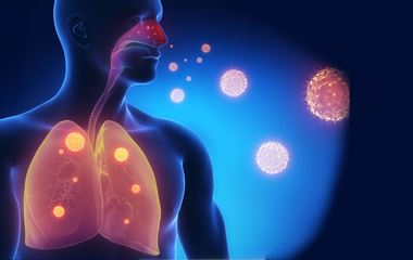 環境荷爾蒙增塑劑與防腐劑、清潔劑
